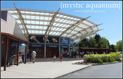 Mystic Aquarium Institute For Exploration Mystic
