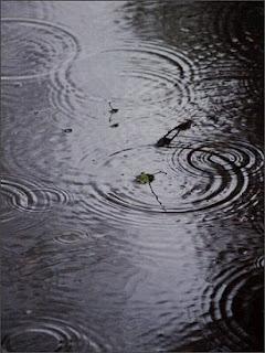 Me encanta lluvia