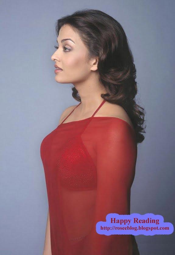 Sari with Sexy boob transparent