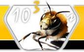 1003 Bees Site Statistics