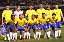 SELEÇÃO BRASILEIRA NA COPA DE 2010