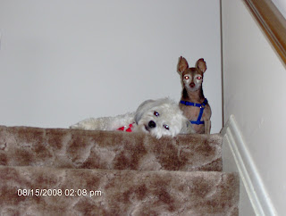 Nisie and Jake at the Top of the Stairs