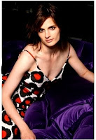 Stana Katic of Castle 2