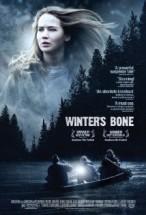 Winters Bone (2010) Subtitulado
