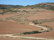 SPANISH CAMINO NEAR LOS ARCOS