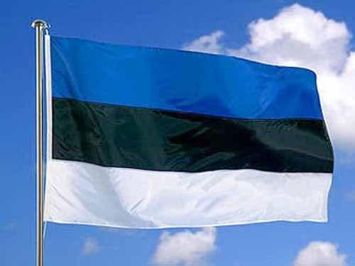 флаг белый с синим