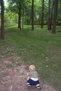 toddler crawling in the woods