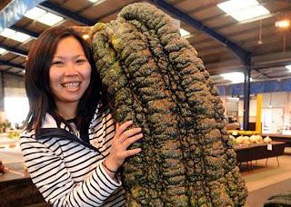 Os maiores Legumes, no Muleque Doido