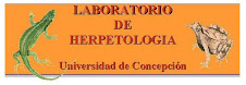laboratorio de Herpetologa