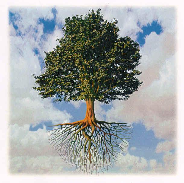 Pohon bumi menangis pohon bantu aku menjadi kamu yang kuat yang mu