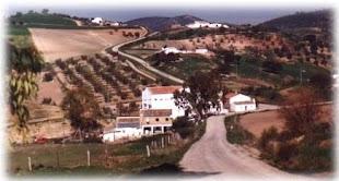 Escuela de Madrigueras