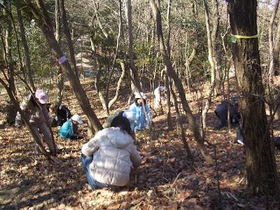 アカネズミ,カマキリ,かぶと虫の冬の生態を観察