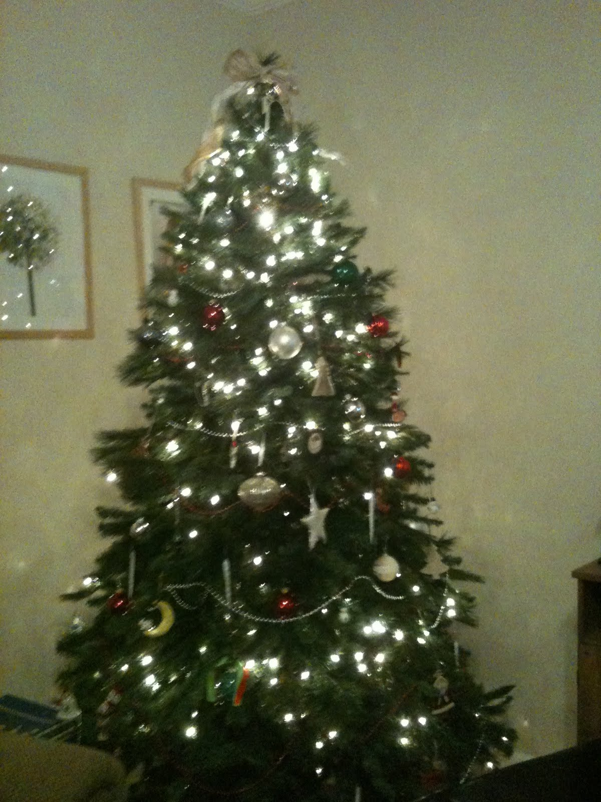 http://2.bp.blogspot.com/_XeJcXX_Fgbc/TQw56GPXGdI/AAAAAAAAAI8/_y33ku88kRU/s1600/Valerie+Christmas+Tree.jpeg