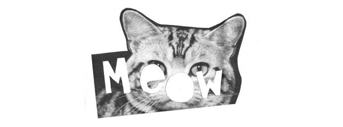 Meow Magazine