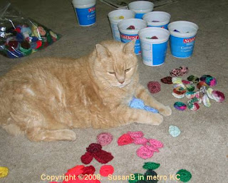 feline assistant