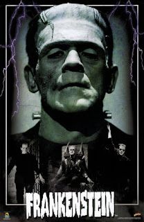 mary shellys gothic novel frankenstein essay