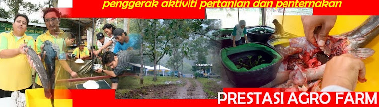PRESTASI AGRO FARM
