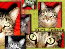 Kurt Cobaia