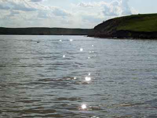Sun dappled water - talk about 'bright light'!