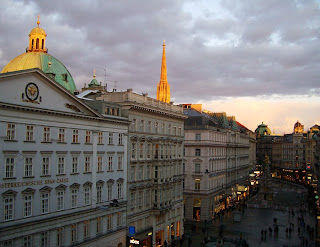 Vienna at dawn (onemorehandbag)