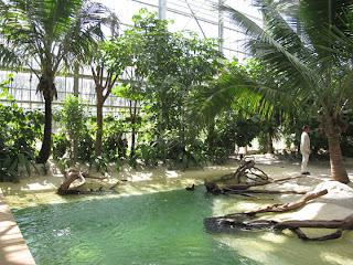 Nuevo parque, Terra Botanica, en el oeste de Francia 25783_411843634178_353870284178_5040268_782290_n