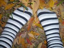 pisando el otoño