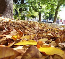 del otoño