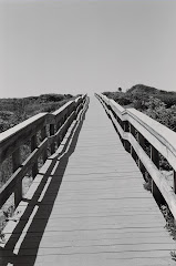 Fire Island Boardwalk