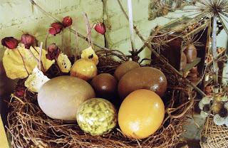 какие бывают яйца