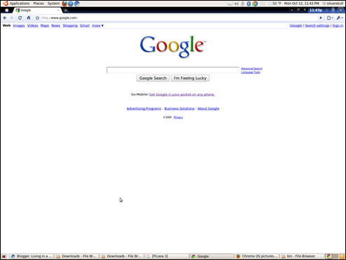 DownloadNews | Download Google Chrome OS Browser 4.0.222.6