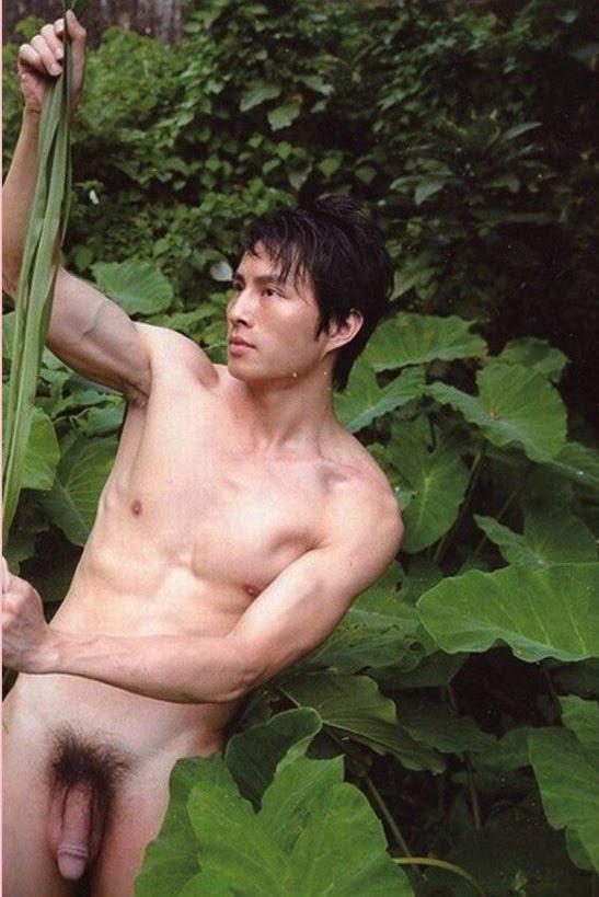 asiáticos s gay