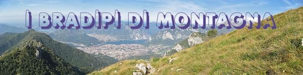 Bradipi di Montagna