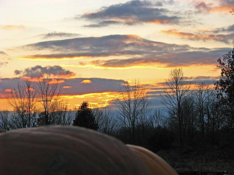 [sunset+over+pumpkins+750]