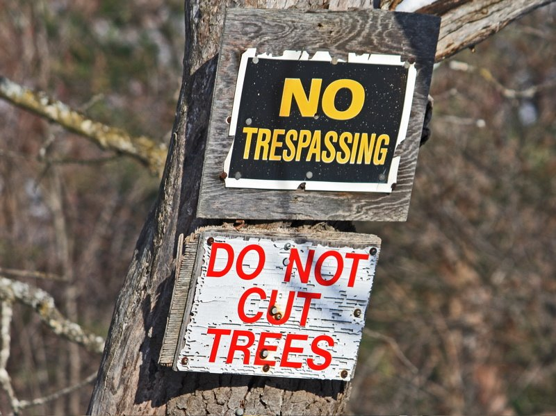 [do-not+cut+trees+sign+750]