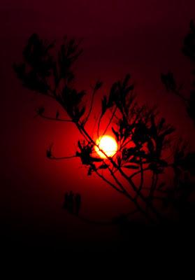 Sunset @ Mukteshwar