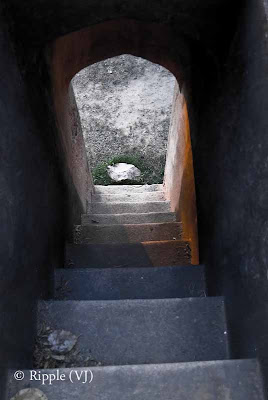 Posted by Ripple (VJ) : A visit to Lodhi Garden, Delhi, INDIA :: Stairs in one of the other tombs in Lodhi-Garden campus.. Know know the exact name...