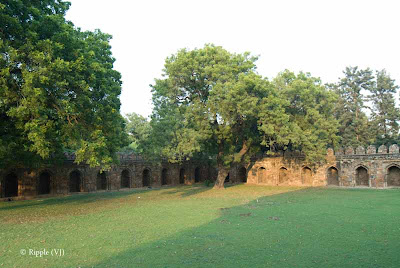 Posted by Ripple (VJ) : A visit to Lodhi Garden, Delhi, INDIA ::Open areas outside the tomb of Mohammed Shah @ Lodhi Garden, Delhi