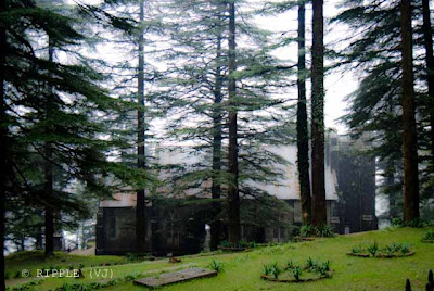 Posted by Ripple (VJ) : The Gothic stone building of the Church was constructed in 1852. The site also has a memorial of the British Viceroy Lord Elgin, and an old graveyard. The church building is also noted for its Belgian stained-glass windows donated by Lady Elgin.: Mcleoganj, Mcloedgaj, Dharmshala, Himachal Pradesh, Saint John Chruch, India, British times, ripple, Vijay Kumar Sharma, ripple4photography, Frozen Moments, photographs, Photography, ripple (VJ), VJ, Ripple (VJ) Photography, Capture Present for Future, Freeze Present for Future, ripple (VJ) Photographs , VJ Photographs, Ripple (VJ) Photography :