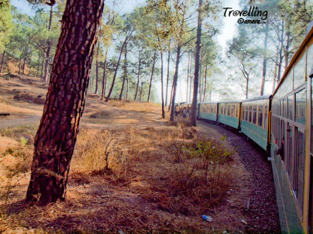 Toy Train experience on Pathankot-Jogindernagar Railway Track in Himachal Pradesh : Posted by VJ SHARMA @ www.travellingcamera.com : I have spent one day in Kalka Shimla Toy train and few days back I had chance to travele in Pathankot-Jogindernagar Toy Train... Here are few photographs of that journey...Pathankot-Jogindernagar Toy Train crossing a bridge near Kangra....The distance of Pathankot from Kangra is 96 kilometers and  Jogindar Nagar from Kangra is 69 kilometers... This toy train takes more time than normal plain area time as it travels at very low speed and as it is a single line so train stops to give passage to trains from other direction. The train passes through valleys, rivers, many beautiful towns and towards the last stretch of the journey having clear view to snow covered Dhauladhar mountain ranges...Narrow track for Pathankot-Jogindernagar Toy Train...Railway Track near Aehju which is a small railway station near to Bir Billing...Railway junction to give pass for other trains coming from other direction... Its single lane and narrow-gauge track...This is of course a different experience as compared to other journeys in  Toy-Trains... If I compare it with Shimla Toy Train, chances of view to snow capped hills is less in case of Kalka-Shimla Toy Train... On this route there are some beautiful tea-gardens... On the other side Shimla-Kalka toy trains passes through various tunnels which is altogether a different experience...More details about trains on this route are available @ http://www.himachalpradesh.us/himachal/himachal_train2.php : I recommend reconfirming these details from IRCTC always... I have seen changes in schedule many times....As the train moves upward and this journey becomes more scenic with a distance view of snow capped Dhauladhar mountains..... Rivers become narrower with deep blue water and the train starts taking curves on hieghts... There are few tunnels in this track in comparison to Kalka-Shimla route...Toy Train passing thr