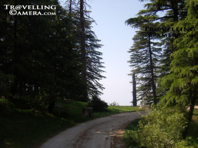 Kala-Top trek is near Dalhousie which is a very popular Hill Station in Himachal Pradesh state of INDIA. Here I am sharing few photographs of KALA TOP trek with some background about this trek... Check out...Kala Top is a Wild Life Sanctuary but we were not able to see any wildlife there though we enjoyed different walks inside the forest....Its an amazing and different trekking experience of going through Kala-Top having thick forests of Deodar (Cedar) trees on alpine hills.A wooden house on the way to Kala Top from Dalhousie...Its a stretch of 12 kilometers approximately from Gandhi Chowk in Dalhousie. We have cross beautiful Bakrota Hills which give clear view to Peer-Panjal mountain range, Bara Pathar, Alha and Lakkar Mandi. I think Lakkar mandi is 9 km from Dlhousie and Kala top is 3 km from Lakkar Mandi...There are two treks to reach the first milestone which is Bakrota Hills.. One is through a Kamala Nehru Park and other is through Dalhousie Public School and Central School for Tibetans which are located on Raizada Hans Raj Road... We decided to follow the road first...Rabindrabath Tagore spent few months with his father at Snowdown cottage at Upper Bakrota hills...Next Milestone Bara Pathar was a good place to have a tea break near an open amphitheater and a temple...Here is a view of road inside Kala Top Wild life sanctuary...Trekking is best way of appreciating the beauty of nature and especially when you are at hills covered with snow and surrounded by huge deodars making dense forests...Time to go back to the hotel and take some rest before next trek to Dainkund near Dalhousie...  I will share more photographs of Dainkund Trek soon....Few people prefer to reach Lakkar Mandi by Taxi/Bus and trek other part till kala-Top...There is a Forest Guset house at Kala-Top and not sure if it can be booked for unofficial reasons... Vehicles are not allowed inside this forest without permission from Forest Department...My friend Vikas taking some rest on the way to Kala Top... He is a trek enthusiast and had been to many difficult treks in Himachal Pradesh... He is the one with whom I was able to complete Shrikhand Mahadev Trek :-)There are many such ponds in this forest which serve water needs of wild animals in Kala Top Sanctuary...Another mud house having wooden roof... There are few such houses inside the jungle where nobody lives but they give a feeling of haunted houses in dense jungle...There are many such boards on the way but in reality we didn't see anything... But we were very happy with the natural beauty of the forest @ Kala Top, Dalhousie, Himachal Pradesh...