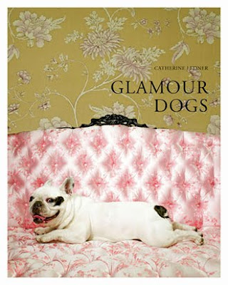 Glamour Dog by Catherine Ledner