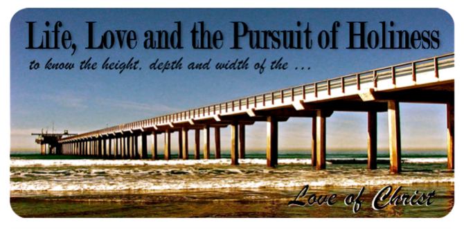 Life, Love and the Pursuit of Holiness
