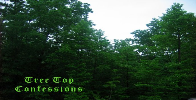 Tree Top Confessions