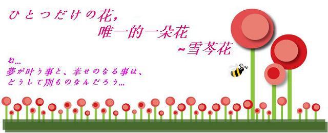 ひとつだけの花, 唯一的一朵花~雪芩花