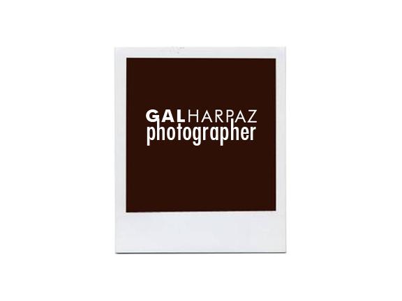Gal Harpaz