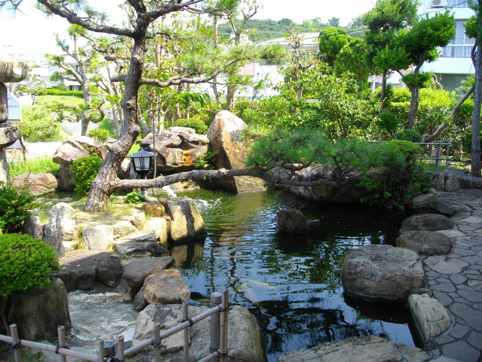 L j popp 39 s world adventures amazing japanese summer for Traditional japanese garden
