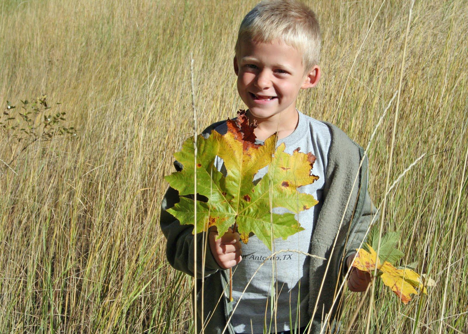 http://2.bp.blogspot.com/_XxFM-qXeOeQ/TLu_HAr09TI/AAAAAAAABfY/dnHxkPFsUU8/s1600/gabe+in+grass+with+leaf.jpg
