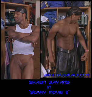 Celebrities Exposed: Shawn Wayans' Hot Body & Tucked In Cock: malecelebnudies.blogspot.com/2010/10/shawn-wayans-hot-body-tucked...