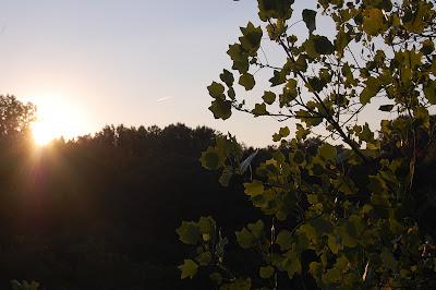 Sun setting from Walnut Lane Bridge.