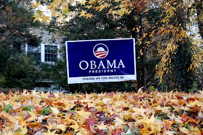 An Obama sign in a yard strewn with fallen leaves.